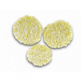 Cepillos de esponja Karcher para pulido para piedra / linóleo / PVC